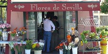 Floristik-Shop in Sevilla, ein Praktikumsbetrieb für Teilnehmer des IdA Projektes.