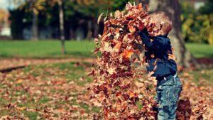 In einer Parkanlage spielt ein Kleinkind mit Herbstlaub.